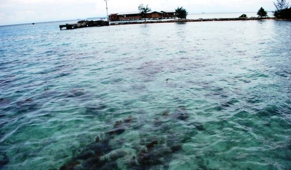 Kepulauan Seribu memiliki banyak titik penyelaman yang indah (Foto: Mutya/Okezone)