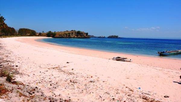 Pink Beach, Lombok timur (Foto: Twicsy)