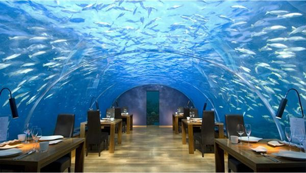 Restoran bawah laut di Maladewa (Foto: okeanosgroup)