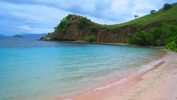 Pantai Pink di Flores, Nusa Tenggara Timur (Foto: indzoom)