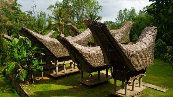 Tongkonan, bentuk rumah adat Rantepao (Foto: dailytravelphotos)