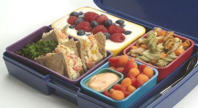 Kotak Makan Siang (Foto: Dailygreen)