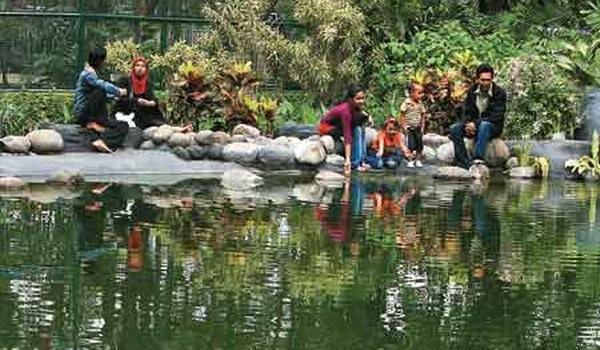 Taman flora surabaya (foto: suroboyokurek.wordpress) surabaya