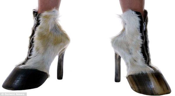 Sepatu kaki sapi