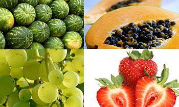 Manfaat buah-buahan untuk kesehatan dan kecantikan