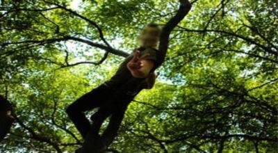 Protes di atas pohon (Foto: Emirates 247)
