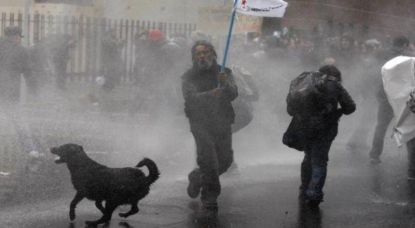Blacky dalam satu aksi protes (Foto: AP)