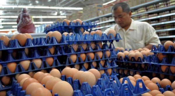 Sebagai sumber protein, telur ayam juga dapat menangkal berbagai penyakit. (Foto: Runi Sari B/Okezone)
