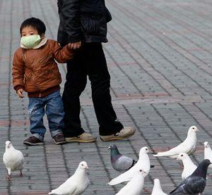 Korban Flu Burung di China Terus Meningkat