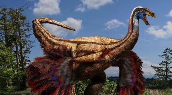 dinosaurus berbulu