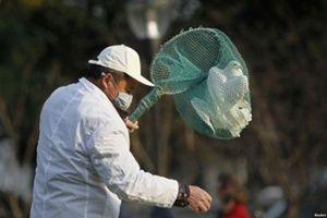 H7N9, Salah Satu Virus Paling Mematikan