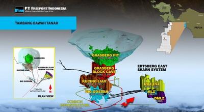Komisi IV DPR mendesak presiden SBY untuk segera menasionalisasi PT FREEPORT