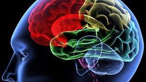 Depresi Sebabkan Ukuran Otak Menyusut Dua Persen