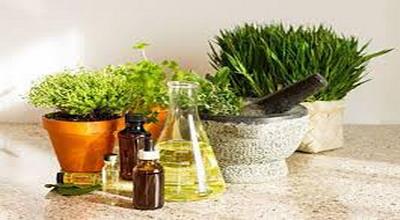 Atasi Kekurangan Vitamin D dengan Konsumsi Bahan Organik