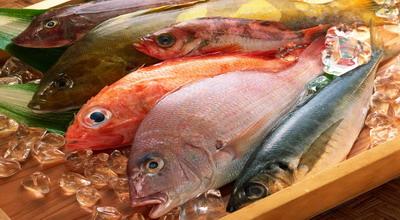 Wanita Hamil Disarankan Konsumsi Banyak Ikan, Tanpa Merkuri