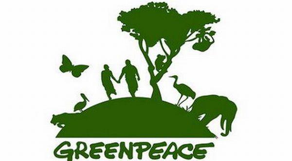 Greenpeace Apresiasi Komitmen Capres-Cawapres Soal Energi Terbarukan