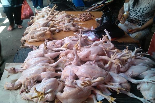 Daging ayam. (Foto ilustrasi: Okezone)