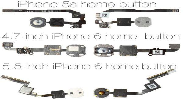 Phone 6 akan Dibekali Komponen Berbeda