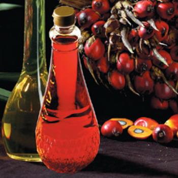 Manfaat Besar Minyak Sawit Merah