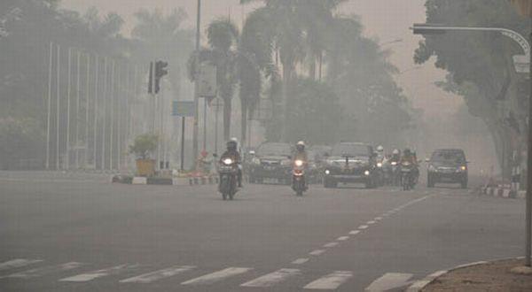 Asap Mulai Ganggu Kesehatan Ribuan Warga Riau