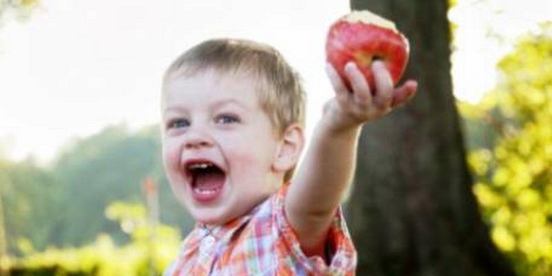 Rajin Makan Apel, Paru-Paru Lebih Sehat