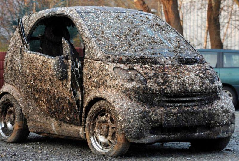 Mobil Tenggelam di Laut Selama 7 Tahun Dijual, Laku Rp17 Jutaan