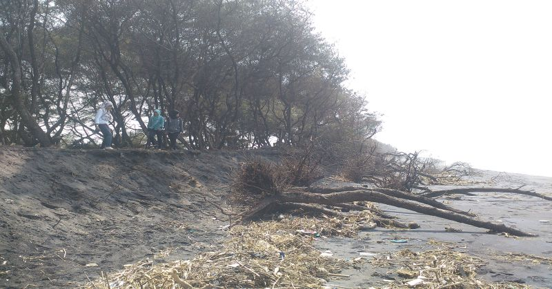 https: img.okeinfo.net content 2016 03 25 338 1345486 abrasi-pantai-di-wilayah-kabupaten-tangerang-memprihatinkan-VilZyNffiq.jpg