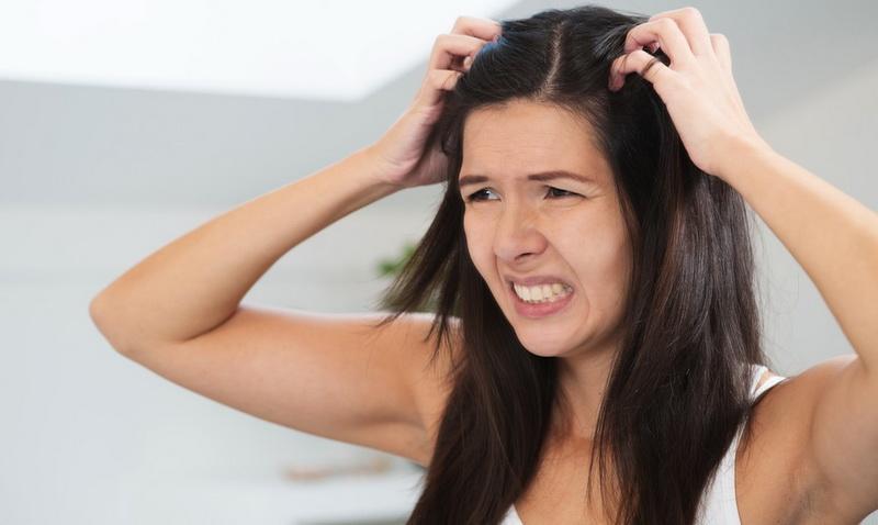 Image result for rambut berketombe di baju