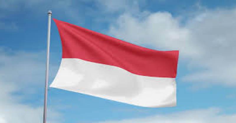 https: img.okeinfo.net content 2016 04 20 207 1368279 aplikasi-nasional-khusus-perempuan-indonesia-ZSqD0PD79G.jpg