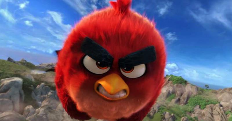 https: img.okeinfo.net content 2016 06 10 56 1411748 fotografer-tangkap-momen-red-angry-birds-di-dunia-nyata-CfKAW2FSWn.jpg