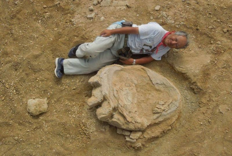 https: img.okeinfo.net content 2016 10 06 406 1508068 jejak-kaki-dinosaurus-ditemukan-di-mongolia-OiyWtXts1b.jpg