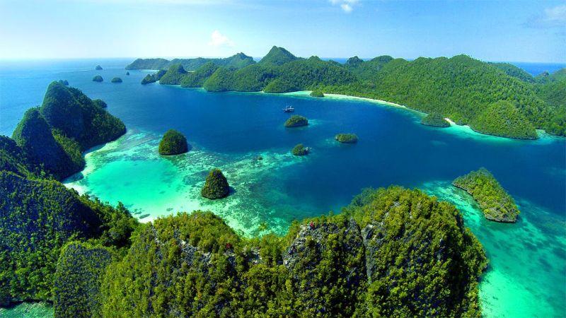 warna terumbu karang serta penampakan ikan pari, hiu, kura-kura, dan ubur-ubur.
