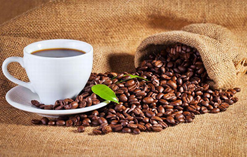 pemerintah juga harus rutin mempublikasikan data tentang bagaimana perkembangan kopi di Indonesia