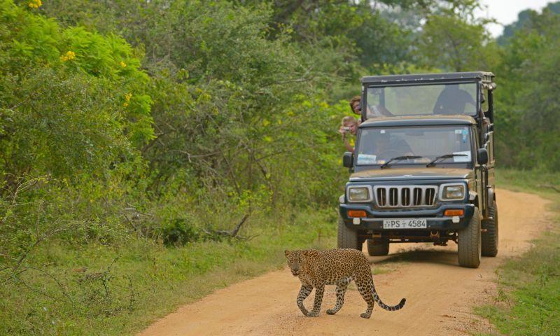 https img.okeinfo.net content 2017 01 13 406 1590941 5 petualangan di afrika yang tak menguras dompet eTFwRoGIh1.jpg