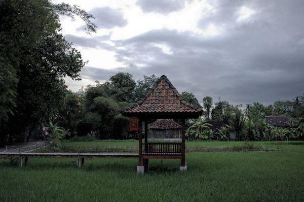 Desa wisata kasongan