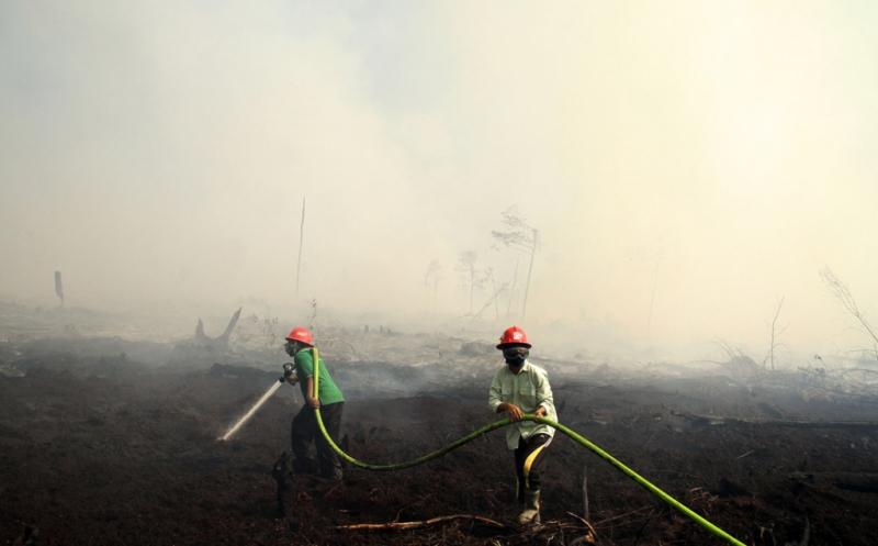 https: img.okeinfo.net content 2017 05 02 340 1680759 antisipasi-bencana-kabut-asap-riau-3-helikopter-disiapkan-lRyKH6tMvo.jpg