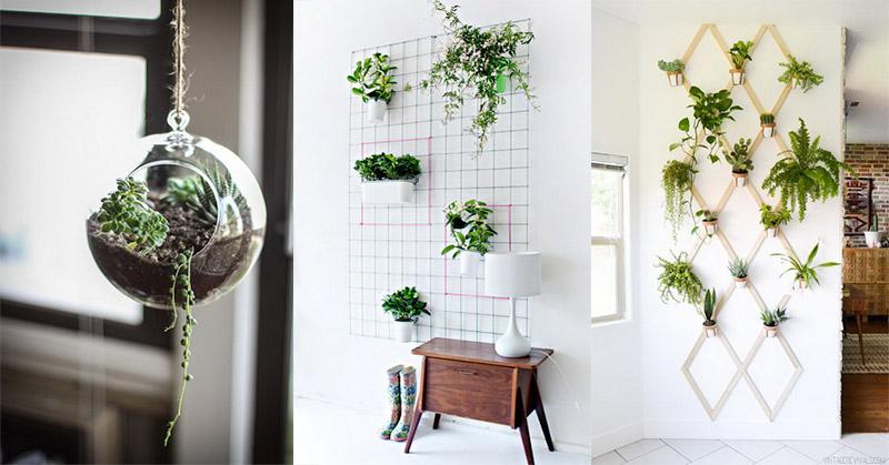 Design Dapur Menyatu Dengan Taman  ada dinding sempit di dekat dapur hiasi dengan vertical