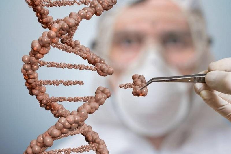 https: img.okeinfo.net content 2017 07 31 481 1746897 peneliti-amerika-serikat-edit-gen-manusia-apa-tujuannya-fRARuKSsoz.jpg