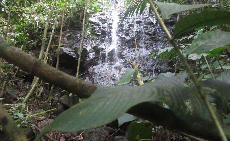 share loc bertualang mencari air terjun yang tersembunyi di hutan