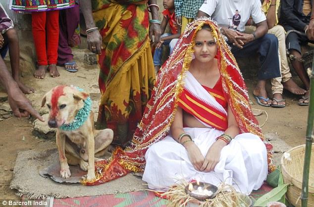 https: img.okeinfo.net content 2017 08 22 406 1760376 demi-hilangkan-kutukan-seorang-remaja-18-tahun-di-india-menikahi-anjing-liar-d7kprgpffO.jpg