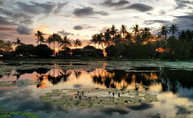 https: img.okeinfo.net content 2017 09 04 406 1768702 kemunculan-penyu-misterius-magnet-baru-kolam-wisata-candidasa-pulau-dewata-jVCi1GmmIl.JPG