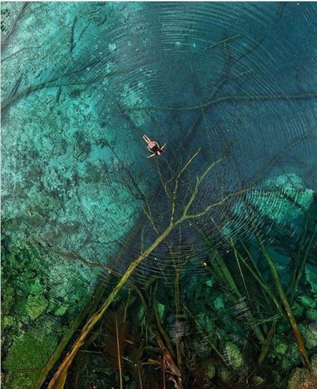 https: img.okeinfo.net content 2017 09 08 406 1772371 share-loc-berada-di-dalam-hutan-danau-paisu-pok-di-sulawesi-tengah-tawarkan-wisata-air-yang-jernihnya-sebening-kaca-7HD9mAw7WS.jpg