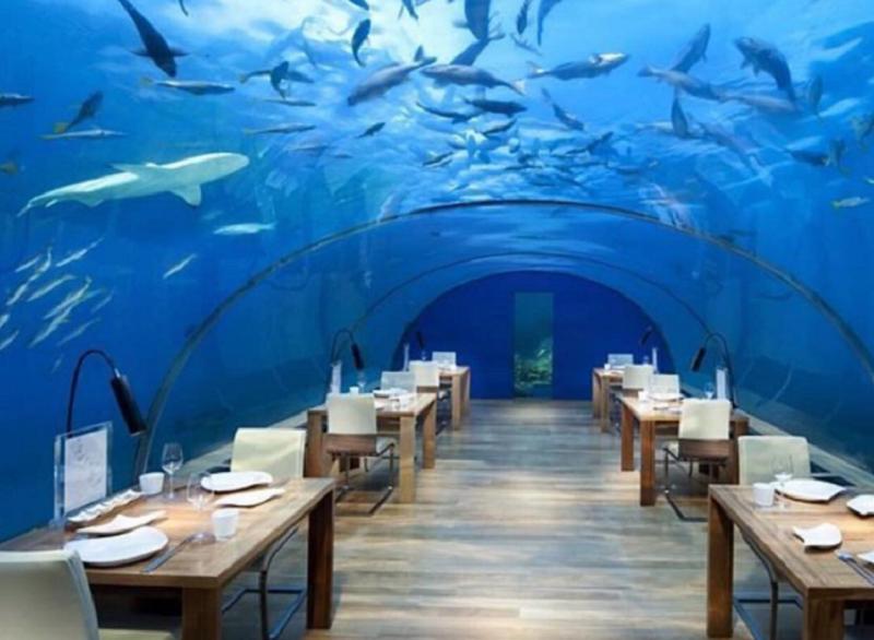 https: img.okeinfo.net content 2017 09 13 298 1775361 segera-kunjungi-restoran-di-bawah-laut-ini-sebelum-hancur-karena-kondisi-ekstrem-PW3PPfTfNW.png