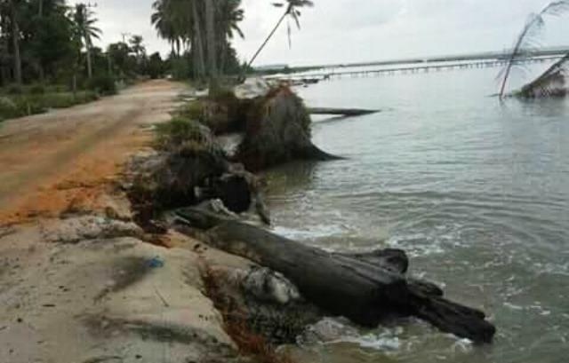 https: img.okeinfo.net content 2017 10 10 340 1792518 abrasi-pantai-keraya-kian-parah-jalan-penghubung-antar-desa-ini-terancam-putus-IhOpVLKLJX.jpeg