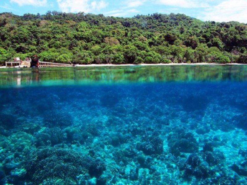 https: img.okeinfo.net content 2017 10 13 406 1795170 uncover-indonesia-pesona-3-pantai-di-kepulauan-selayar-miliki-terumbu-karang-indah-yang-asyik-untuk-diselami-zjAAyD8Qvo.jpg