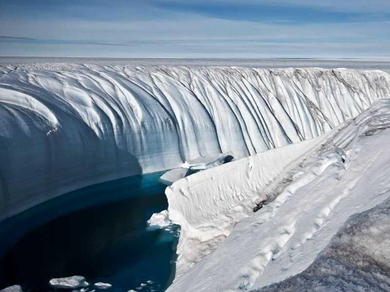 https: img.okeinfo.net content 2017 11 12 56 1812578 wow-fosil-berusia-260-juta-tahun-ungkapkan-bahwa-antartika-punya-hutan-AkF8Usg67H.jpg