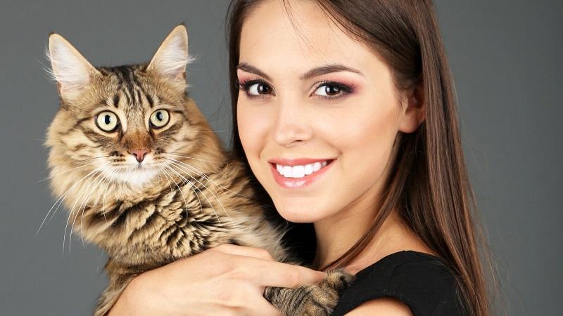 https: img.okeinfo.net content 2017 11 24 481 1819894 tak-usah-takut-toksoplasma-pelihara-kucing-bagus-untuk-kesehatan-lho-O5h2dPRjjb.jpg