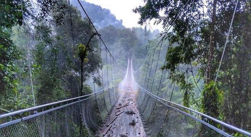 https: img.okeinfo.net content 2018 01 09 406 1842613 sukabumi-bangun-jembatan-gantung-terpanjang-dan-tertinggi-di-jawa-barat-YeycKuW3kV.jpg