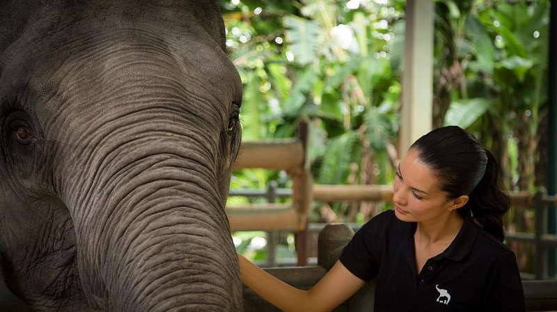 https: img.okeinfo.net content 2018 01 12 194 1844273 4-selebriti-indonesia-yang-jadi-aktivis-pelindung-hewan-bpu0ynA98o.jpg