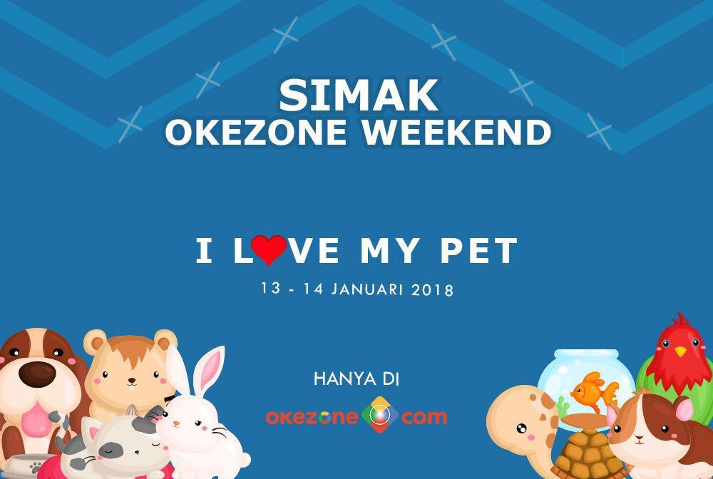 https: img.okeinfo.net content 2018 01 12 196 1844311 intip-perawatan-mahal-hewan-kesayangan-selebriti-hingga-kisah-haru-pertemanan-hewan-di-okezone-weekend-dvHqm02vb8.jpg